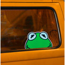 Lucky passenger: Frog for your bus